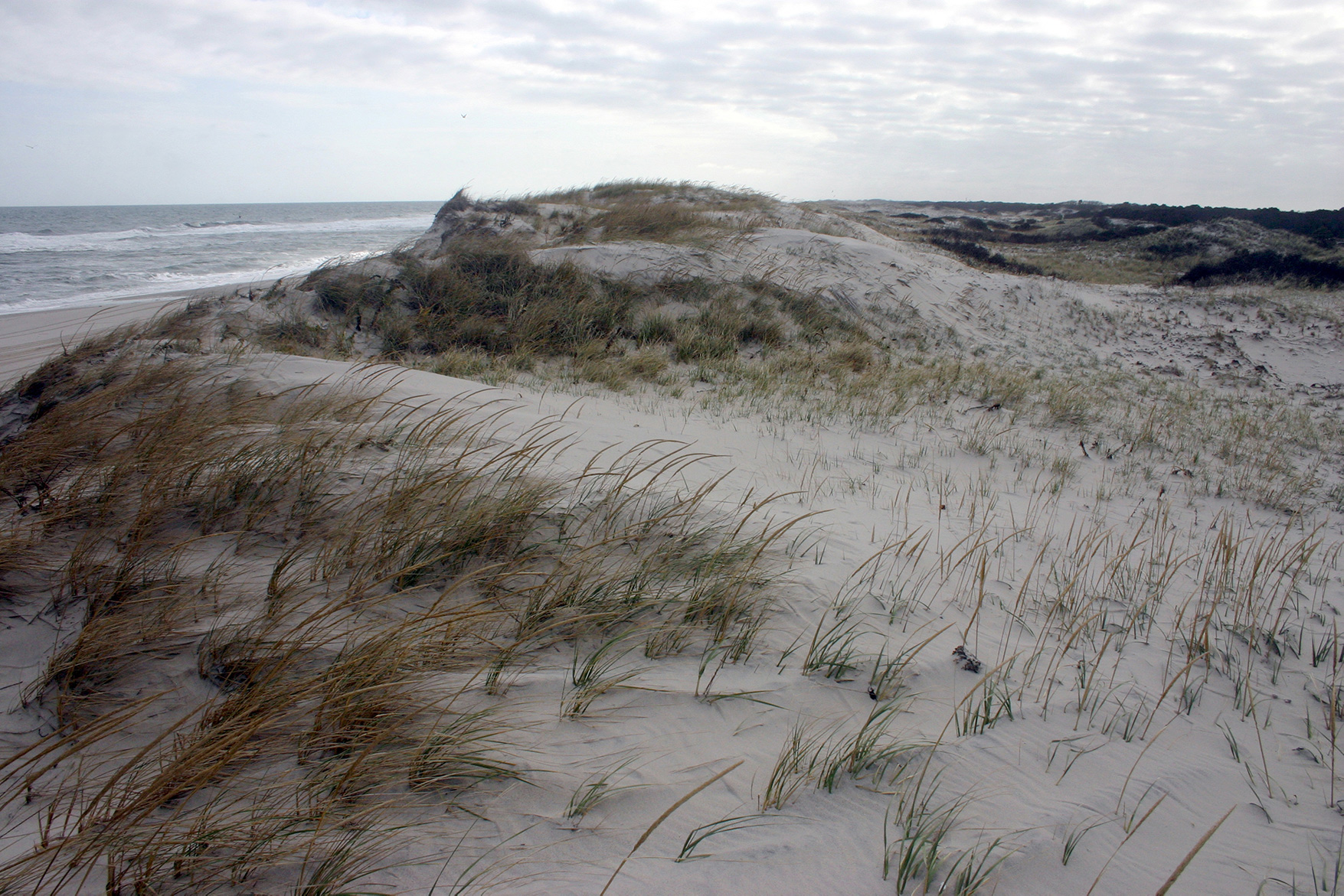 10 Great places to take a walk - Sandy Hook