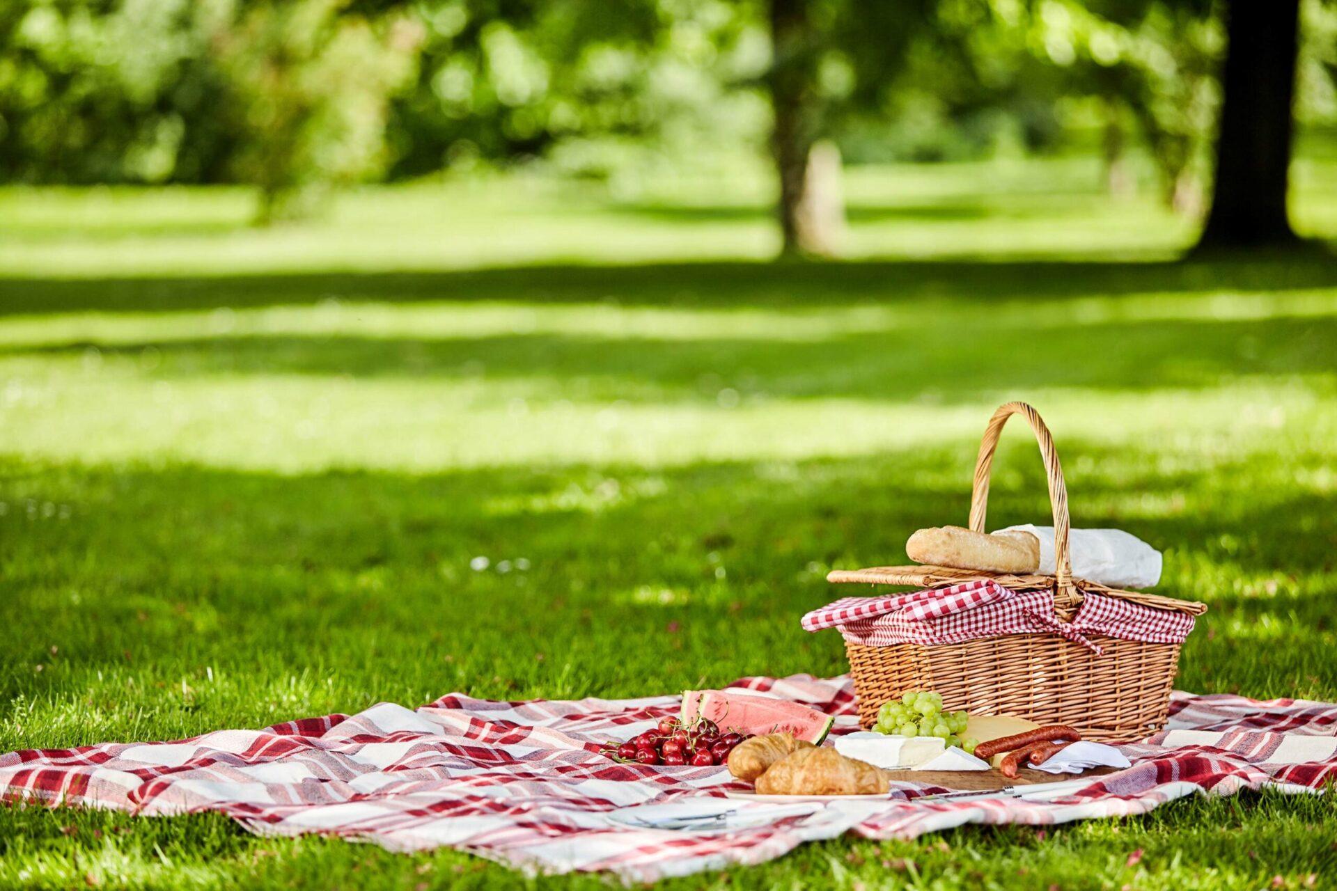 picnic basket on a blanket